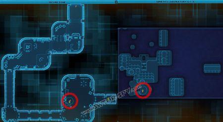 codex C2-D4 image 2  middle size