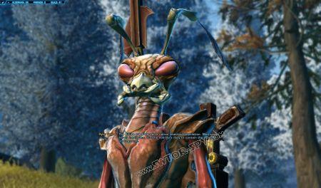 Quest: The Killik Problem, additional info image 11 middle size