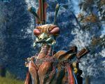 Quest: The Killik Problem, additional info image 11 thumbnail